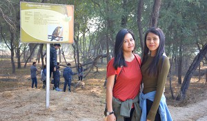 Sultanpur Bird Sanctuary (2)